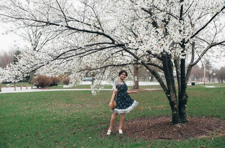 Lifestyle Blog Dreaming Loud wearing Ann Taylor Mixed Floral Flounce Dress for Cherry Blossoms festival 1