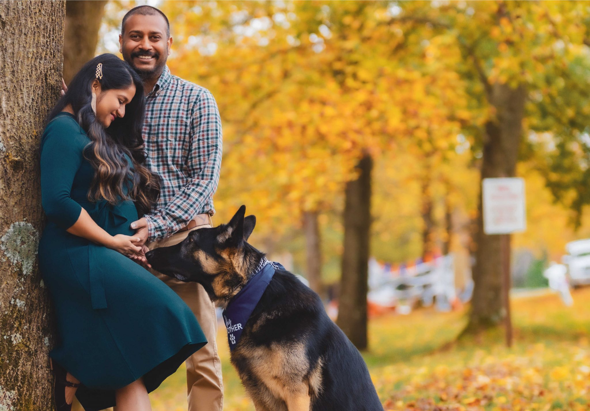 Fall Pregnancy Announcement by top Maryland life and style blogger, Dreaming Loud |Pregnancy Announcement by popular Maryland lifestyle blog, Dreaming Loud: image of a man wearing a blue and red plaid shirt and khaki pants and a pregnant woman wearing a blue maternity dress, statement earrings, and purple velvet shoes standing together next to their German Shepard dog that's wearing a 'Big Brother' bandana around his neck.